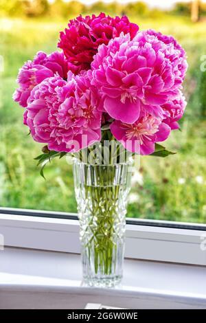 Un beau bouquet de fleurs pivoines dans un vase sont debout sur le rebord de la fenêtre