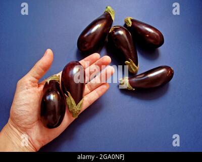 Mini aubergines sur fond bleu
