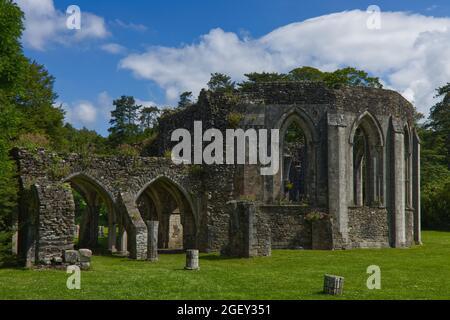 Les ruines de la Maison du Chapitre de l'abbaye de Margam, un monastère cistercien, le Parc national de Margam. Port Talbot, pays de Galles du Sud.