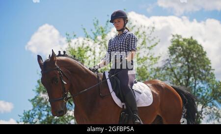 une jeune fille est assise sur un cheval brun dans la nature près d'un arbre. Photo de haute qualité