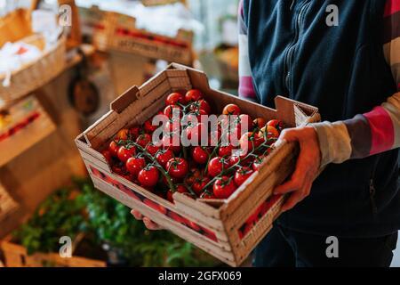 Assistant d'atelier tenant une caisse de tomates