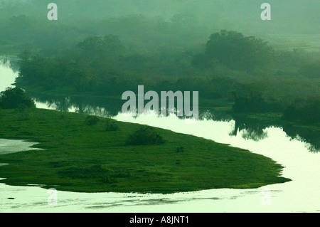 Matin brumeux à Rio Chagres dans parc national de Soberania, République du Panama. Banque D'Images