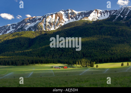 Les terres agricoles près de Joseph avec grange et Montagnes Wallowa Oregon Banque D'Images