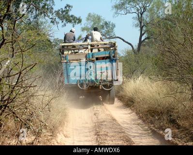 Camion dangereux avec les bovins nightlife sur un seul chemin de sable à la frontière entre le Paraguay et la Bolivie, Banque D'Images