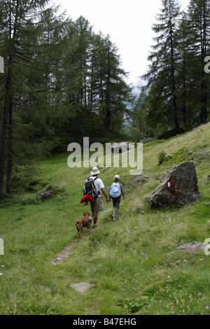 L'homme, enfant et chien en randonnée dans les Alpes italiennes, l'Alpe Devero, Italie Banque D'Images