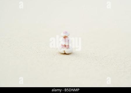 Pile sur les coquillages sur le sable Banque D'Images