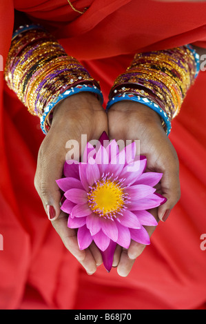 Femme indienne offrant un Nymphaea nénuphar Tropical flower in her creux des mains. L'Andhra Pradesh, Inde Banque D'Images