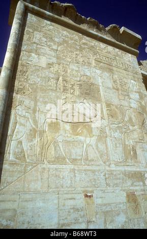 La sculpture murale sur seconde terrasse du temple de la Reine Hatshepsout avec goddes Hathor comme une vache portant Banque D'Images