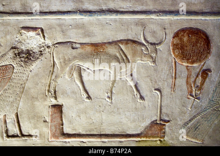 Travail de secours du Temple de Seti I à Abydos, vallée du Nil Egypte Banque D'Images