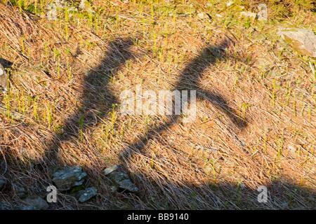 L'ombre 2 hommes sautant dans le Lake District UK Banque D'Images