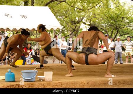 Les lutteurs de sumo de la heya Minezaki pendant leur entraînement matinal, Kyuka Koen (parc), fleurs neuf Kuwana, Banque D'Images
