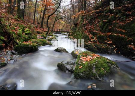 Tockghyll 'force' au-dessus de chutes d'Ambleside, Parc National de Lake District, Cumbria en automne. Banque D'Images