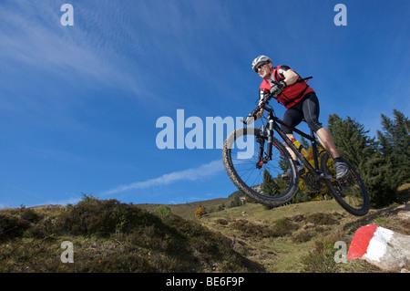 Mountainbiker sur gaisberg, rettenbach, Tyrol, Autriche, Europe Banque D'Images