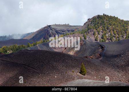 Vue depuis le sommet, Deseada Cumbre Vieja, 'Ruta de los Volcanes, Route des volcans, La Palma, Canary Islands, Banque D'Images