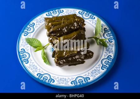 Les feuilles de vigne farcies Beyrouth Liban Moyen Orient Banque D'Images