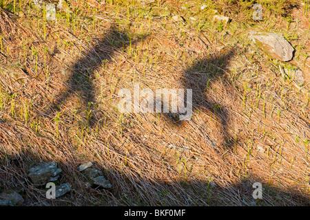 L'ombre 2 hommes sautant dans le Lake District, UK Banque D'Images