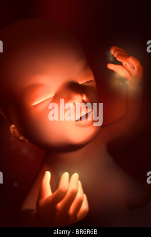 Cette image médicale 3D illustre fœtus à treize (13) semaines_deuxième trimestre. Les doigts et les orteils se sont Banque D'Images