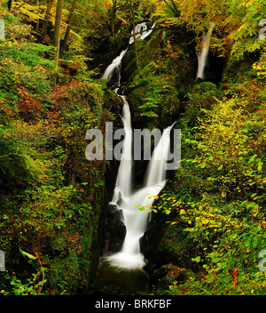 L'automne à Stockghyll vigueur dans le Lake District Banque D'Images
