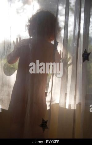 Jeune enfant regarde par la fenêtre de derrière rideau voilage Banque D'Images