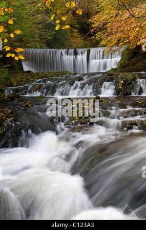 Force Stockghyll en automne Ambleside Cumbria UK Banque D'Images