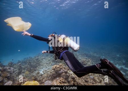 Un plongeur récupère un sac en plastique dans la mer Rouge, Dahab, Egypte Banque D'Images