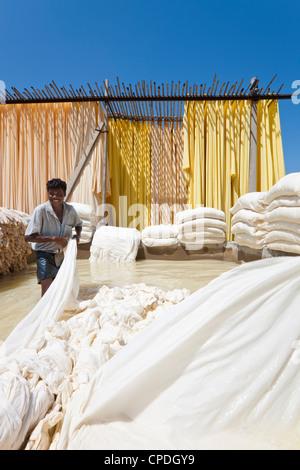 Tissu de lavage dans un pool de blanchiment, Sari garment factory, Rajasthan, Inde, Asie Banque D'Images