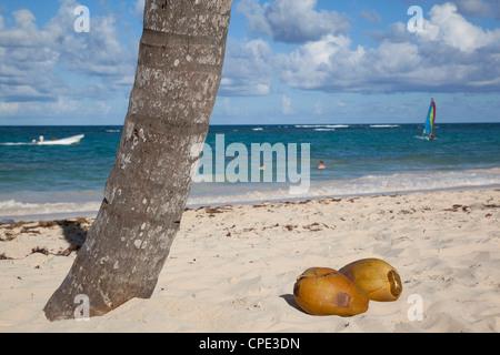 La plage de Bavaro, Punta Cana, République dominicaine, Antilles, Caraïbes, Amérique Centrale Banque D'Images