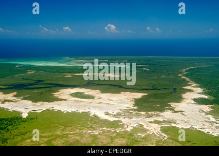 Les mangroves le long de la côte de la Parc National des Quirimbas au Mozambique. Banque D'Images