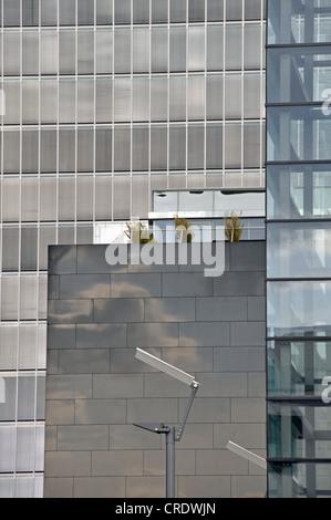 Kranhaus, Crane House Office Building, dans le port Rheinauhafen, Cologne, Rhénanie du Nord-Westphalie, Allemagne, Banque D'Images