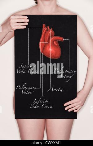 Femme tenant un tableau noir avec un titre diagramme / illustration d'un coeur humain dessiné dessus à la craie. Banque D'Images