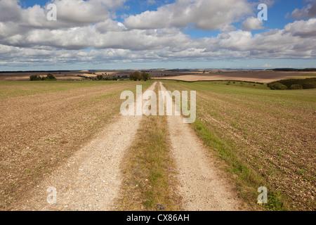 Un paysage agricole avec une piste qui traverse la ferme crayeuse un champ cultivé sous un ciel nuageux ciel bleu Banque D'Images
