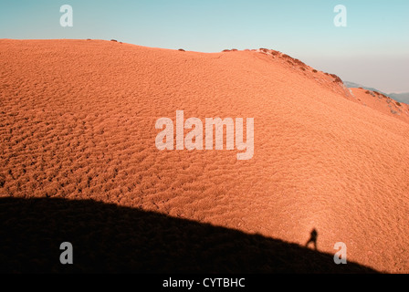 L'ombre d'un homme sur la prairie jaune en haute montagne. Banque D'Images