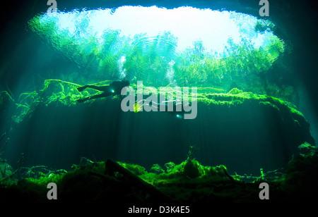 Deux plongeurs dans le jardin d'Eden cavern part du Cénote système sur la péninsule du Yucatan au Mexique. Banque D'Images
