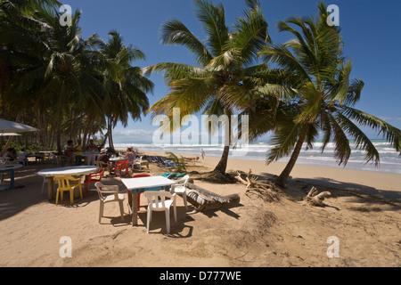 Las Terrenas, République dominicaine, un restaurant de fruits de mer sur la plage Playa Coson Banque D'Images