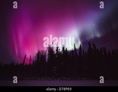 Rouge Vert Violet au-dessus du lac Papoose East Aurora au cours de la nuit du 14 décembre 2006 de la vallée inférieure Banque D'Images