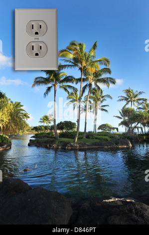 Hawaii Island Wall. Banque D'Images