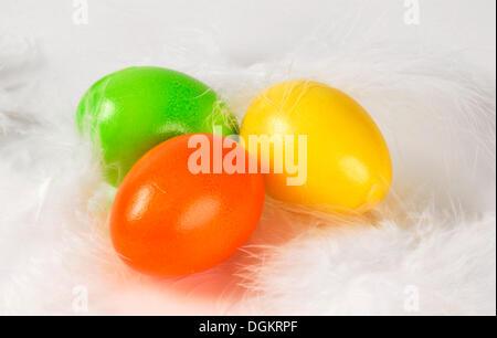 Les oeufs de Pâques sur trois plumes blanches Banque D'Images