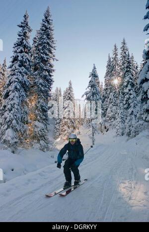 Skieur dans la forêt, l'Autriche, Europe Banque D'Images