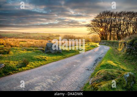 Un chemin de campagne menant à Cornwall Bodmin Moor Banque D'Images