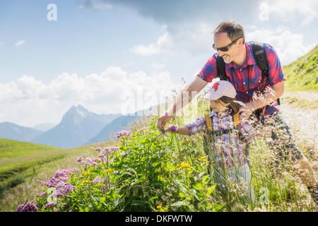 Père et fille à la recherche de plantes, Tyrol, Autriche Banque D'Images
