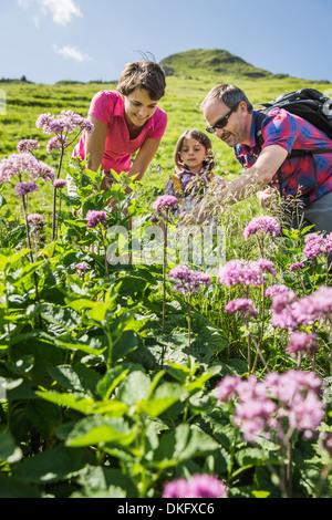 Les parents et la fille de découvrir les plantes, Tyrol, Autriche Banque D'Images