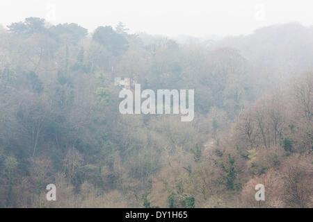 Bristol, Royaume-Uni. 06Th avr, 2014. Une maison à Leigh Woods, Bristol, est enveloppé dans la toile du smog. Une Banque D'Images