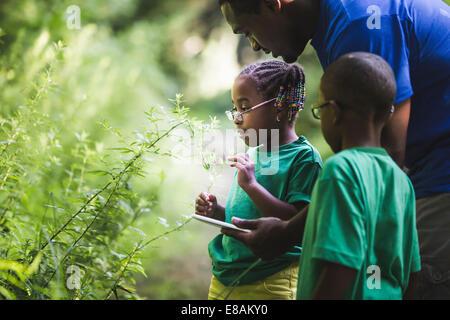 Le père avec la fille et le fils à la recherche dans les usines de forest camp éco Banque D'Images