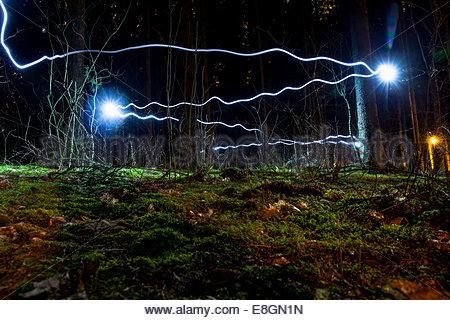 Blue light trails in forest Banque D'Images