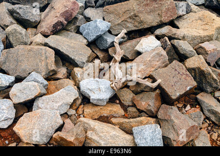 Les rochers de granit et quelques bois flotté entassés sur le sol près d'un lac d'eau douce. Banque D'Images