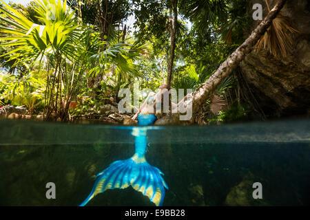 Sirène rousse assise sur un arbre avec sa queue dans l'eau profitant du soleil dans la péninsule du Yucatan, cénote, Banque D'Images