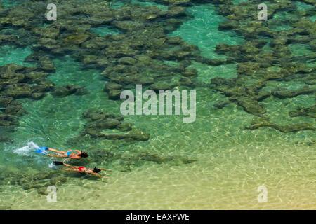 Les gens de la plongée avec tuba parmi les récifs coralliens à Hanauma Bay Nature Preserve, Oahu, Hawaii, USA Banque D'Images