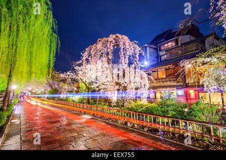 Kyoto (Japon) lors de l'historique quartier de Gion durant la saison de printemps. Banque D'Images