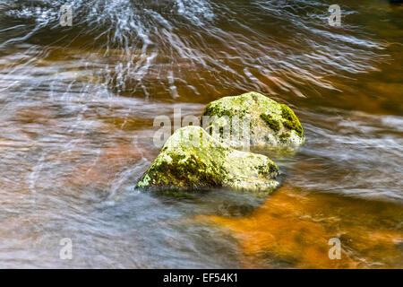 Des roches couvertes de mousse dans un ruisseau Highland ÉCOSSAIS AVEC DE L'EAU TEINTÉE PAR LA TOURBE Banque D'Images