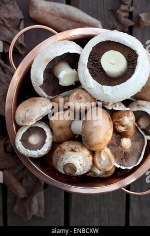 Une passoire de cuivre plein de différents types de champignons Banque D'Images